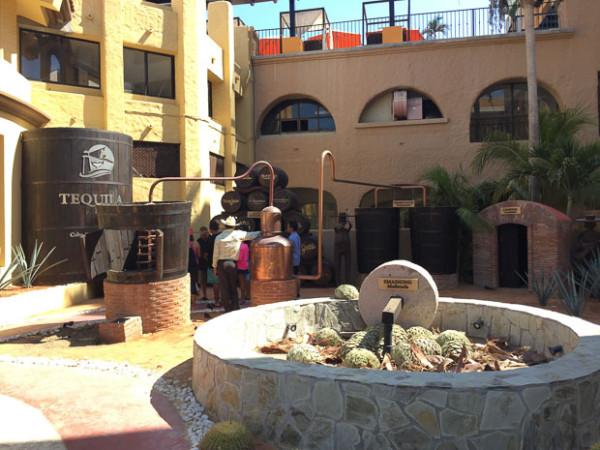 James-Ciera-Cabo-day2-2016-23